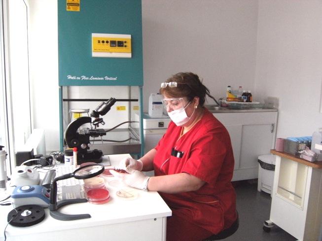 Laborator bacteriologie
